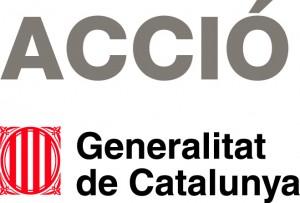 2013_ACCIÓ